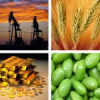¿Qué son los Commodities?