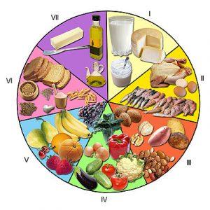 alimentos_rueda_de_los_alimentos
