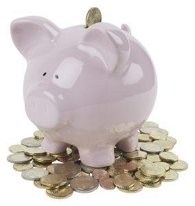 cerdo-dinero1