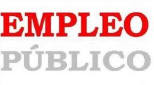 empleo_publico