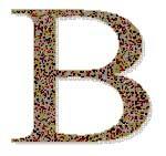 letra-b