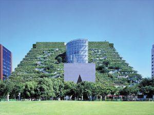 tejado-verde