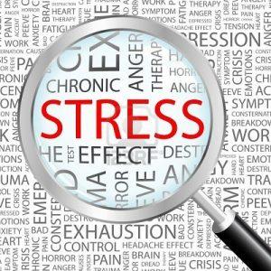 test de estrés